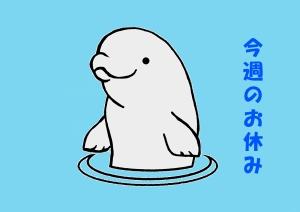 Photo_20200503214701